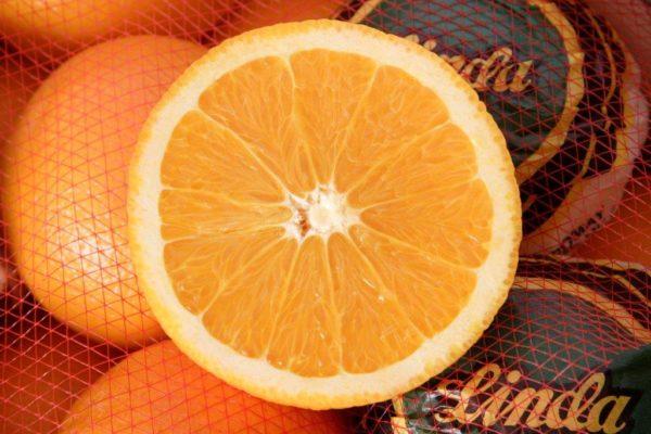 Clementinas-eromay