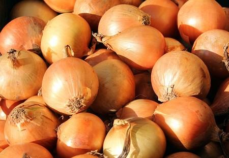 cebolla ecologica enrique romay