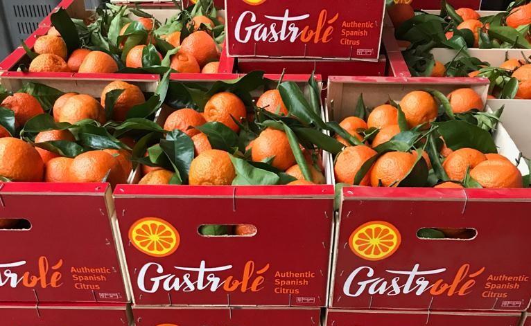 mandarinas con hoja Enrique Romay